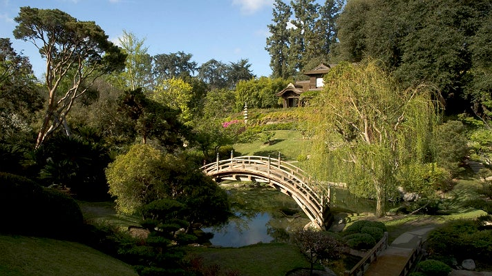 Morning in the Japanese Garden at The Huntington Library